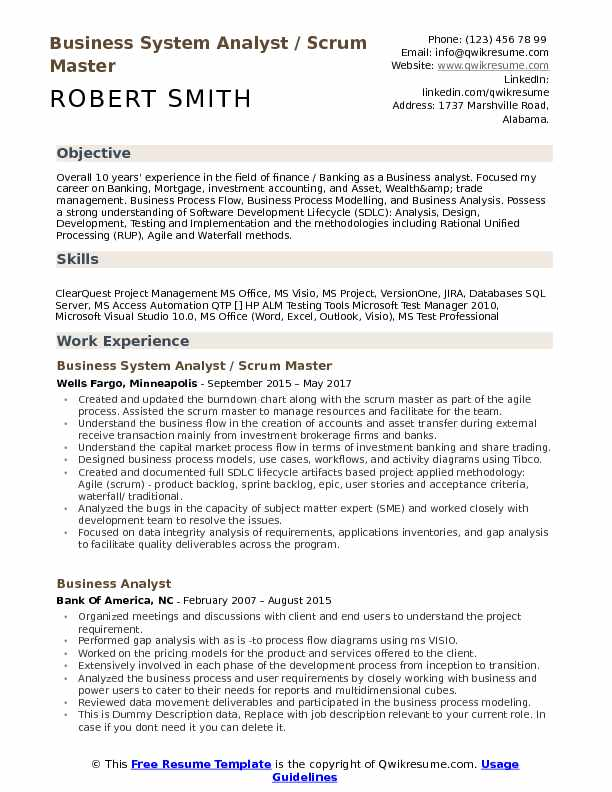 business systems analyst resume  louiesportsmouth