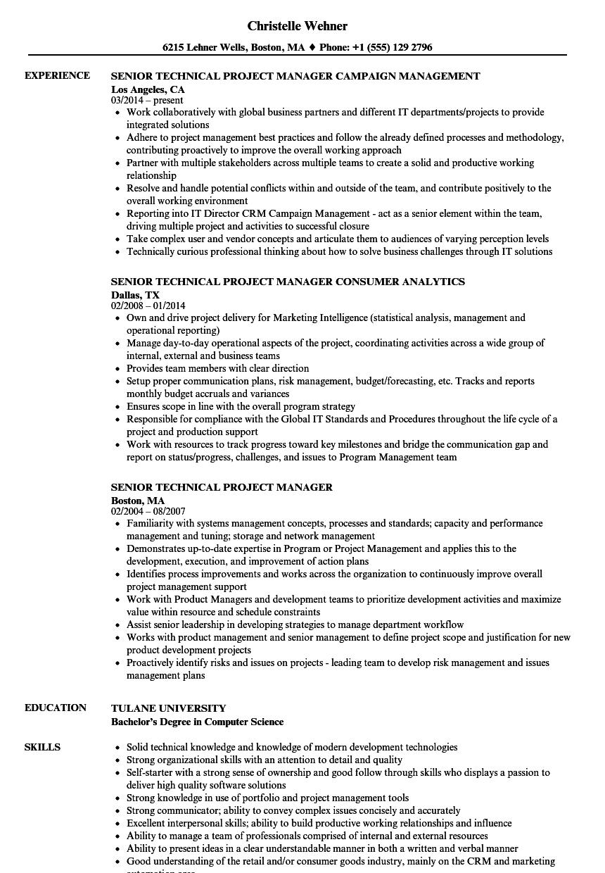 Technical Project Manager Resume Sample from louiesportsmouth.com