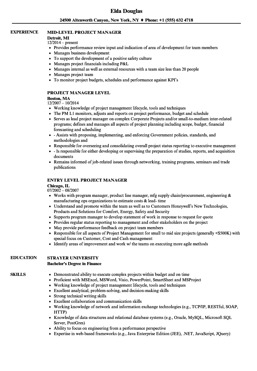 entry level project manager resume  louiesportsmouth